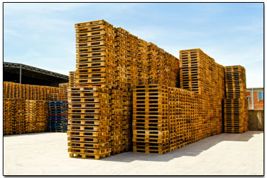 Wholesale Pallets For Sale | Used Wooden Pallets Purchased